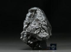 SIKHOTE ALIN (647 gram)