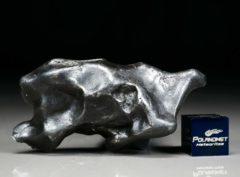 SIKHOTE ALIN (58.1 gram)