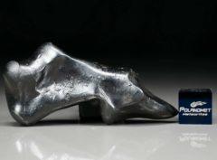 SIKHOTE ALIN (49.1 gram)