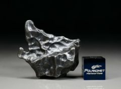 SIKHOTE ALIN (15.3 gram)
