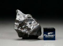 SIKHOTE ALIN (22.4 gram)