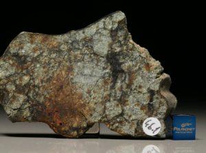 NWA 4559 (46.1 gram)