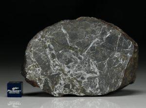 NWA 6258 (456.13  gram)