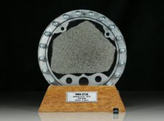 NWA 6726 (81 gram)