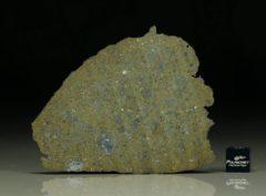 NWA 6231 (22.26  gram)
