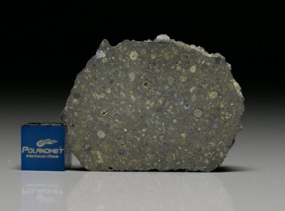 NWA 4964 (20.67 gram)