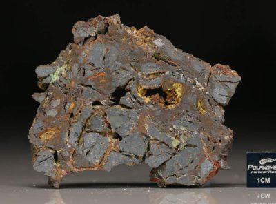 NWA 5499 (28.13 gram)