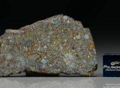 NWA 7169 (8.68 gram)