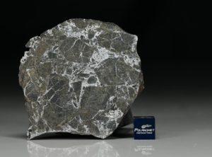 NWA 6258 (118.6  gram)