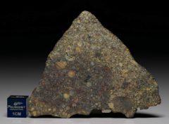 NWA 7158 (25.15 gram)