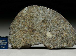 NWA 7161 (12.45   gram)