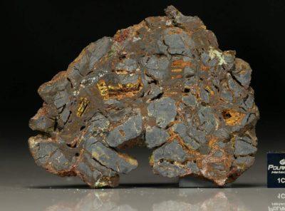 NWA 5499 (29.50  gram)