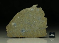 NWA 6231 (22.71 gram)