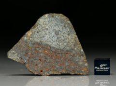 NWA 7170 (13.52  gram)