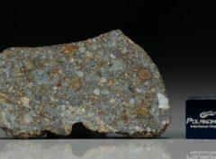 NWA 7169 (8.50 gram)