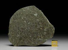 NWA 7317 (45.00  gram)