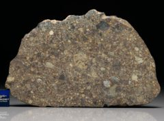 NWA 4560 (54.5 gram)