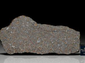 NWA 5498 (21.8 gram)