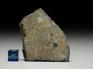 NWA 5497 (17.55  gram)
