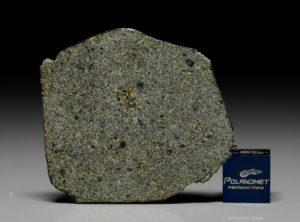 NWA 7317 (10.12 gram)