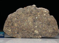 NWA 4560 (36.6 gram)