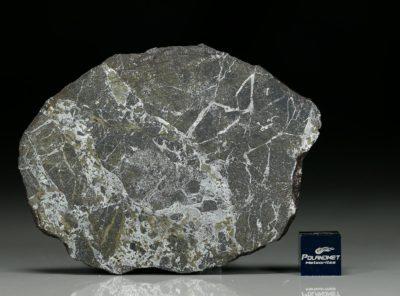 NWA 6258 (24.94 gram)