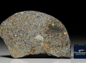 NWA 7161 (11.82 gram)