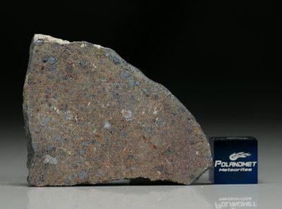 NWA 7167 (8.54 gram)
