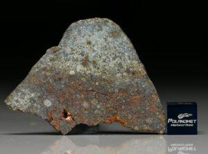 NWA 7170 (10.41  gram)