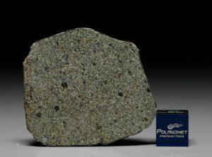 NWA 7317 (10.01 gram)