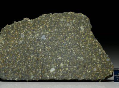 NWA 6254 (44.04    gram)