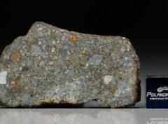 NWA 7169 (8.86 gram)