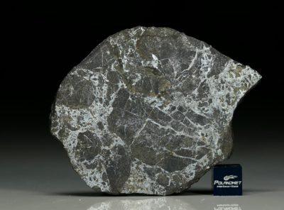NWA 6258 (21.17  gram)