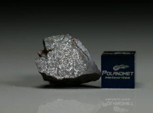 NWA 6258 (3.88   gram)
