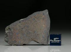 NWA 7167 (7.57 gram)