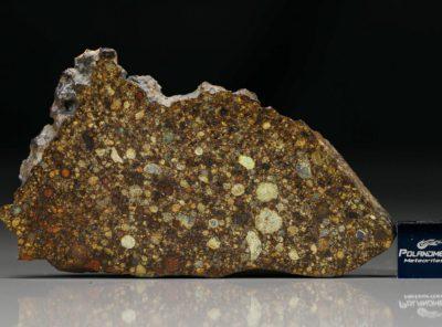 NWA 4560 (20.38 gram)