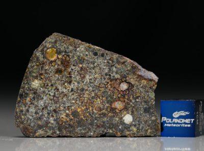 NWA 7169 (6.27 gram)