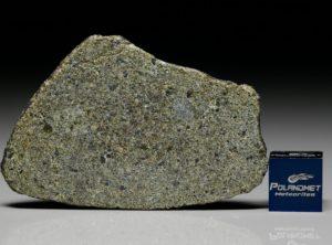 NWA 7317 (10.32 gram)