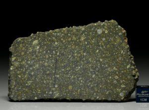 NWA 6254 (40.39   gram)