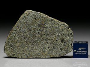 NWA 7317 (9.72  gram)