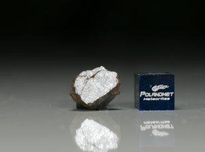 NWA 6258 (1.89   gram)