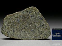NWA 7317 (9.75  gram)