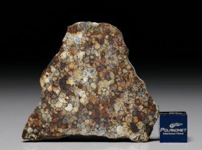 NWA 5205 (11.11 gram)