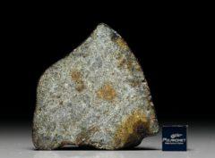 NWA 7575 (23.76  gram)