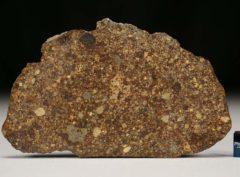 NWA 4560 (36.0 gram)