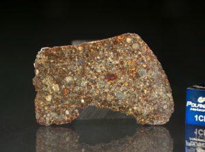 NWA 7169 (7.73 gram)