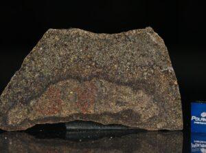 NWA 5505 (8.05 gram)