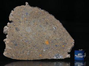 NWA 6231 (20.45 gram)