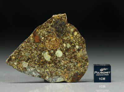 NWA 4560 (8.18 gram)