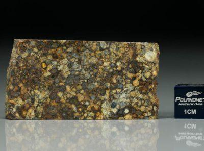 NWA 5205 (9.93 gram)